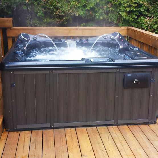 Dynasty Trident, 2010 - Hot Tub For Sale - The Hot Tub Doctors